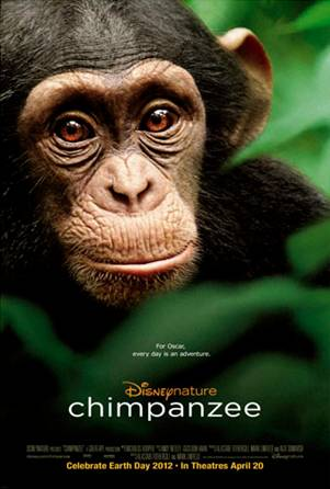 disney natures chimpanzee
