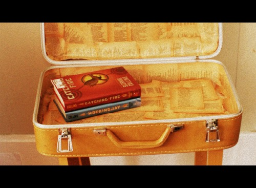 old suit case book shelf