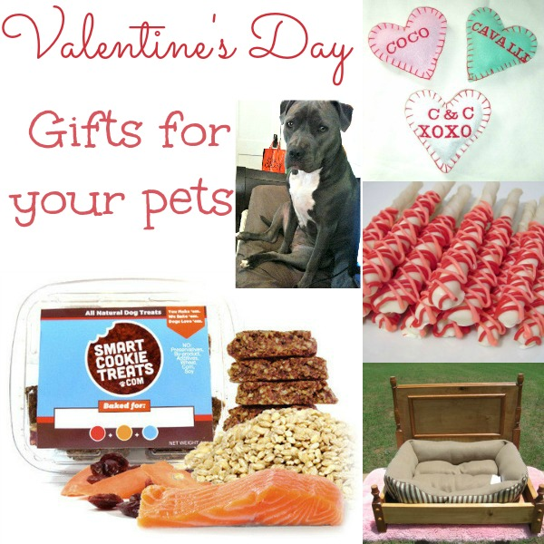 Valentines Day Gift Ideas For Your Pet