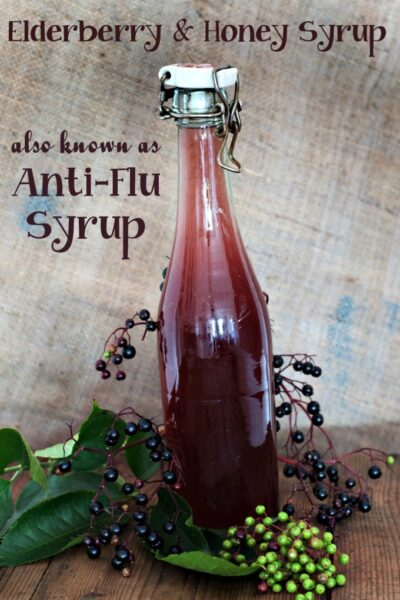 Elderberry and Honey Syrup