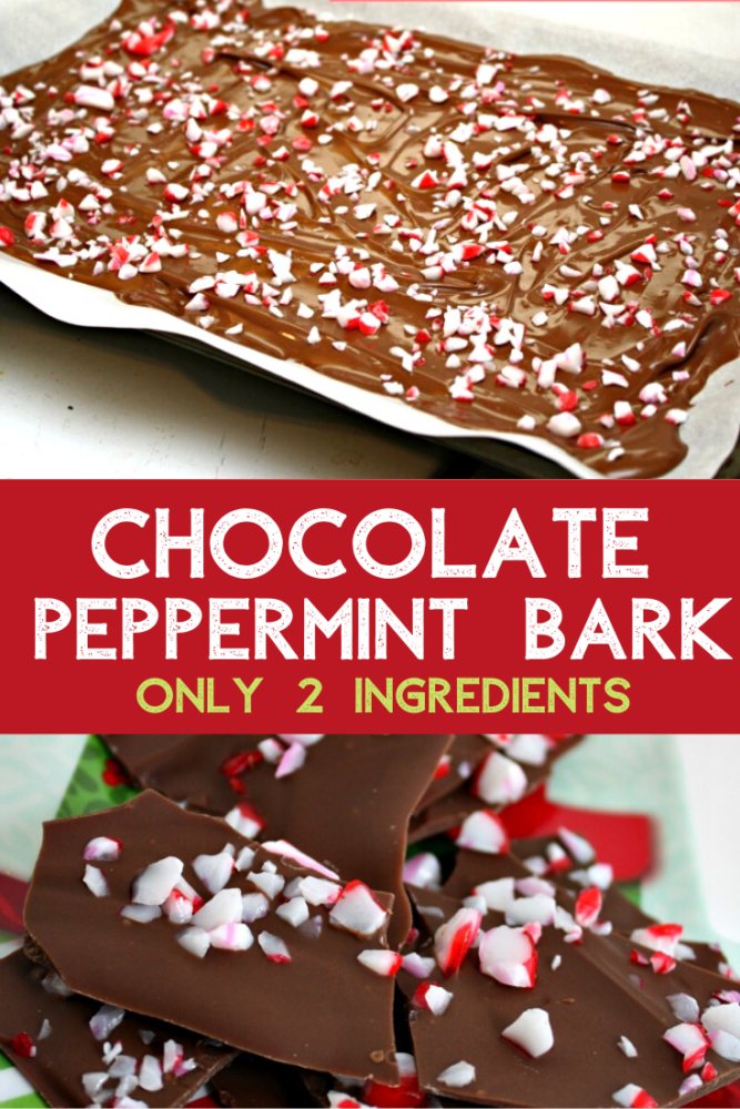 The easiest chocolate bark you will ever make! Only 2 ingredients and perfect for the holiday season or as an edible gift!