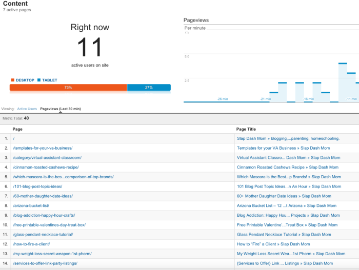 How to Use Real Time Analytics to Increase Blog Traffic and Income