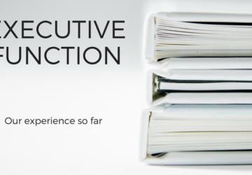 Executive Functioning 101