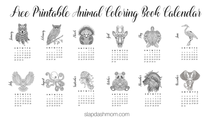 Animal Coloring Book Calendar