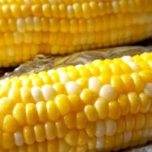 Air Fryer Corn on the Cob - ZERO WW Points